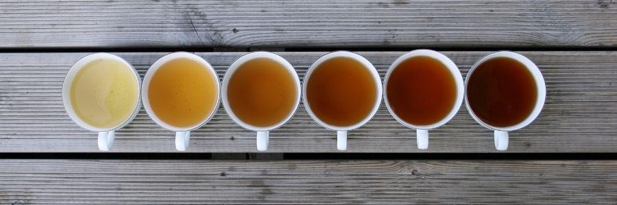 teína y tés